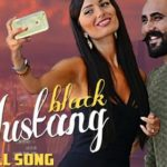 Black Mustang lyrics – Harneet Banwait